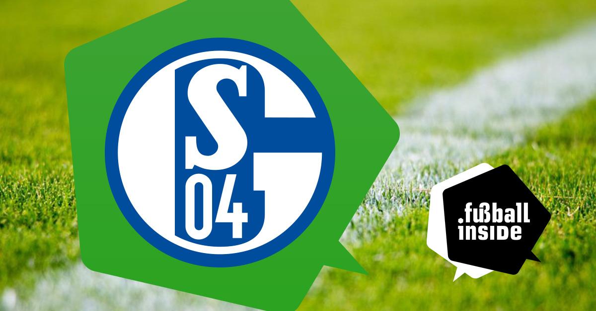 Der FC Schalke 04 als Thema bei fußball inside.